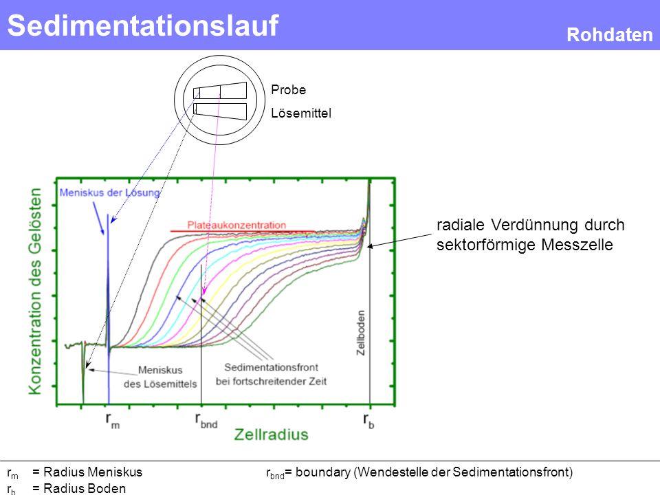 Sedimentationslauf Rohdaten r m = Radius Meniskusr bnd = boundary (Wendestelle der Sedimentationsfront) r b = Radius Boden Probe Lösemittel radiale Ve