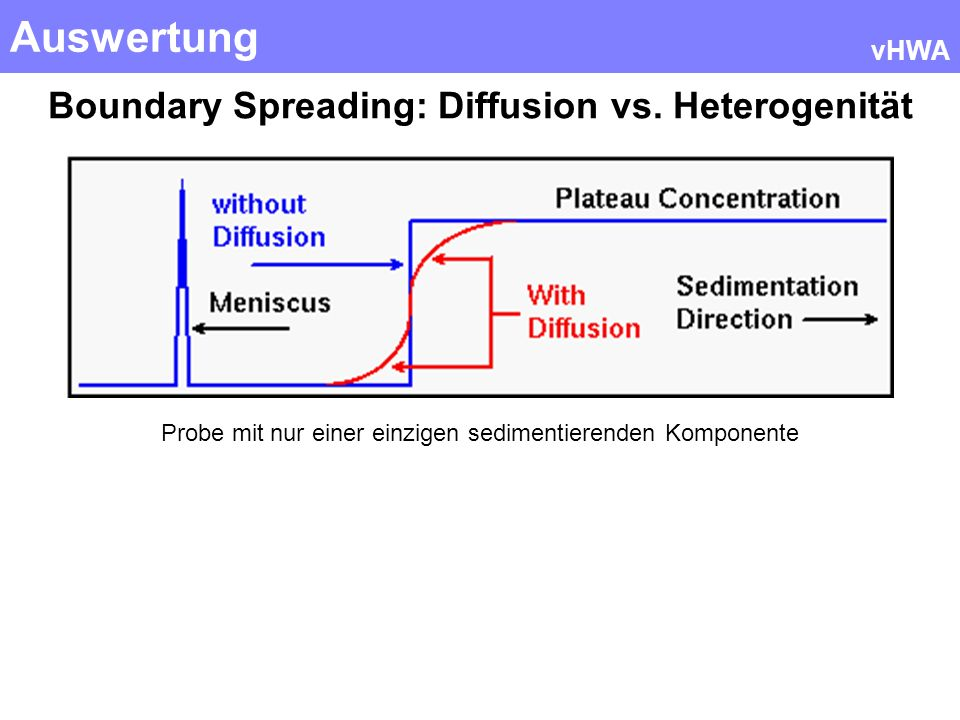 Auswertung vHWA Boundary Spreading: Diffusion vs. Heterogenität Probe mit nur einer einzigen sedimentierenden Komponente
