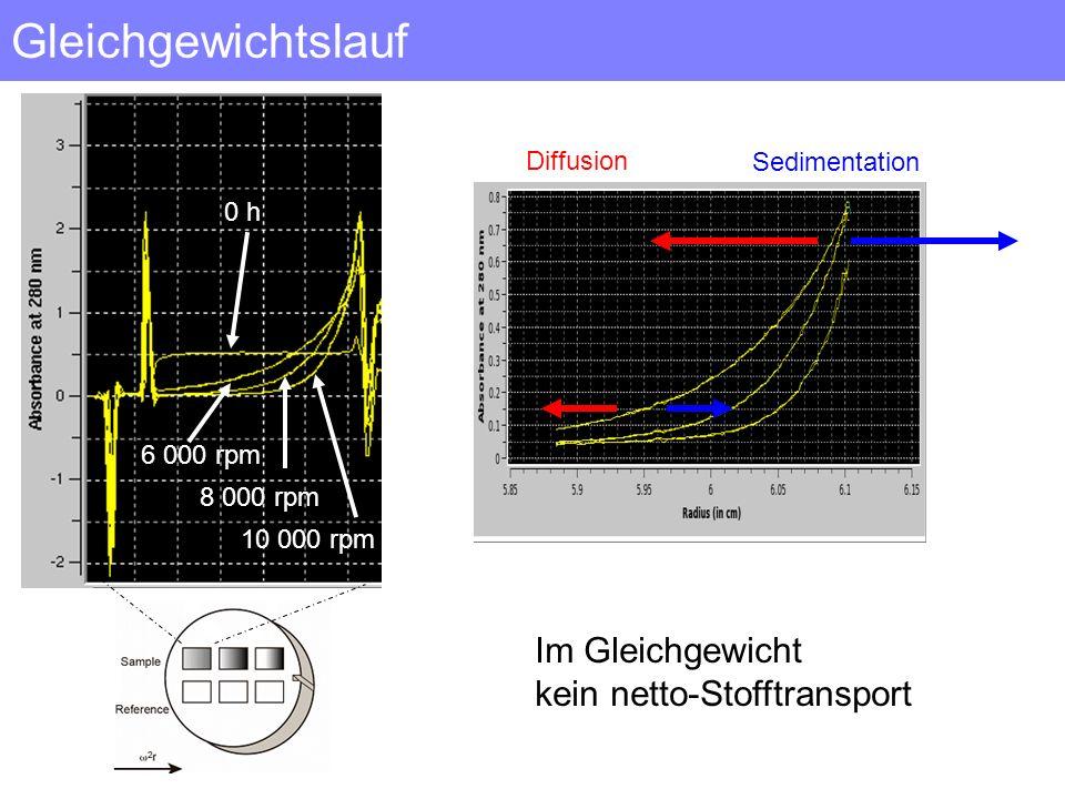 Gleichgewichtslauf 6 000 rpm 8 000 rpm 10 000 rpm 0 h Diffusion Sedimentation Im Gleichgewicht kein netto-Stofftransport