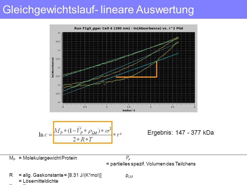 Gleichgewichtslauf- lineare Auswertung Ergebnis: 147 - 377 kDa M P = Molekulargewicht Protein = partielles spezif. Volumen des Teilchens R= allg. Gask