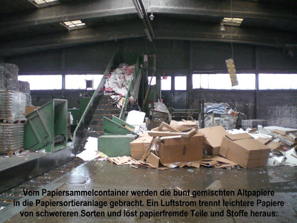 Der grobe Ablauf des Papierrecyclings: Unser Besuch in der Altpapierverwertungsanlage der Firma Kastrup, die das Altpapier der Firma Hellmann verwerte