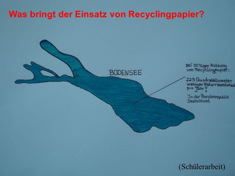 Was bringt der Einsatz von Recyclingpapier? (Schülerarbeit)