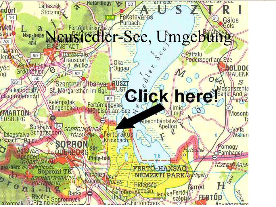 Neusiedler-See, Umgebung