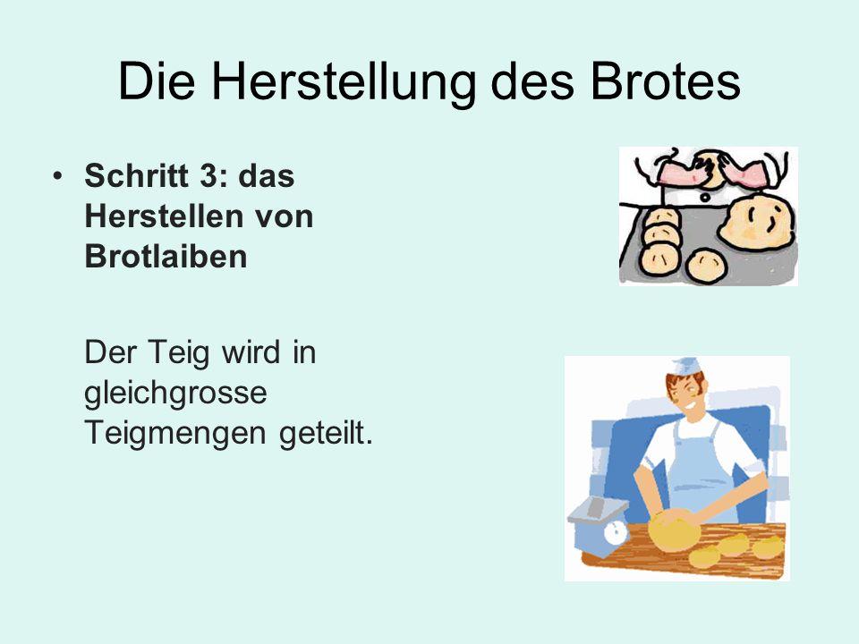 Die Herstellung des Brotes Schritt 3: das Herstellen von Brotlaiben Der Teig wird in gleichgrosse Teigmengen geteilt.