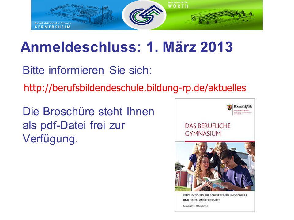 Bitte informieren Sie sich: Die Broschüre steht Ihnen als pdf-Datei frei zur Verfügung. Anmeldeschluss: 1. März 2013 http://berufsbildendeschule.bildu