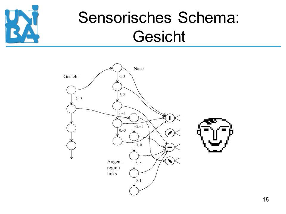 15 Sensorisches Schema: Gesicht