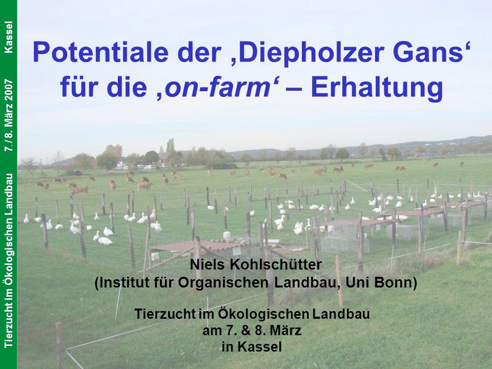 IOL Universität Bonn Institut für Organischen Landbau Tierzucht im Ökologischen Landbau7. / 8. März 2007Kassel Potentiale der Diepholzer Gans für die