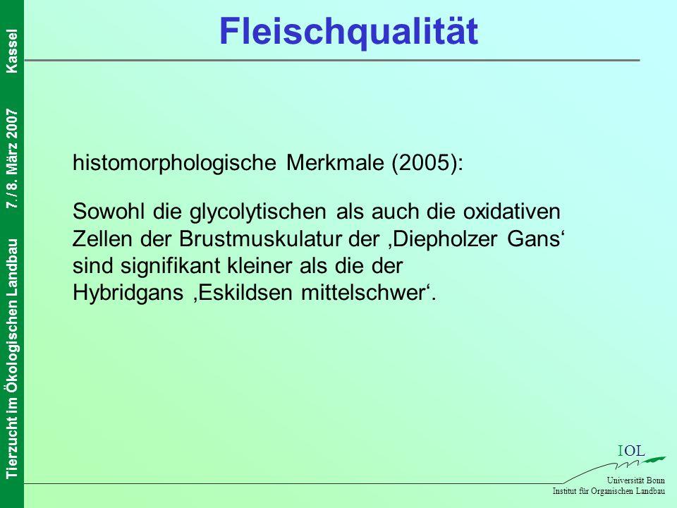 IOL Universität Bonn Institut für Organischen Landbau Tierzucht im Ökologischen Landbau7. / 8. März 2007Kassel Fleischqualität histomorphologische Mer