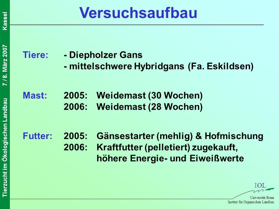 IOL Universität Bonn Institut für Organischen Landbau Tierzucht im Ökologischen Landbau7. / 8. März 2007Kassel Versuchsaufbau Tiere:- Diepholzer Gans