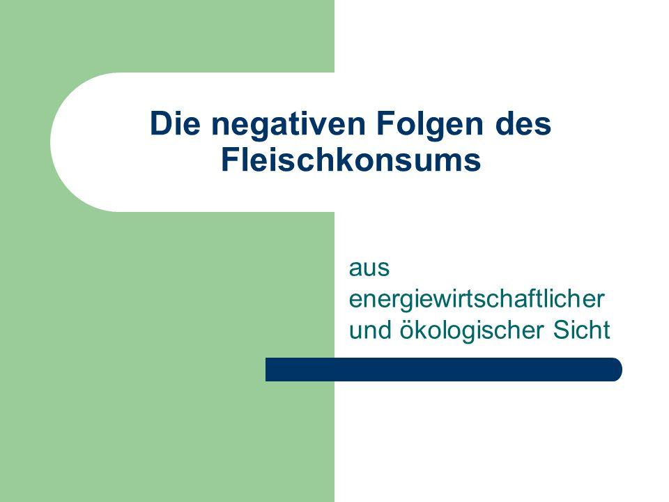 Die negativen Folgen des Fleischkonsums aus energiewirtschaftlicher und ökologischer Sicht