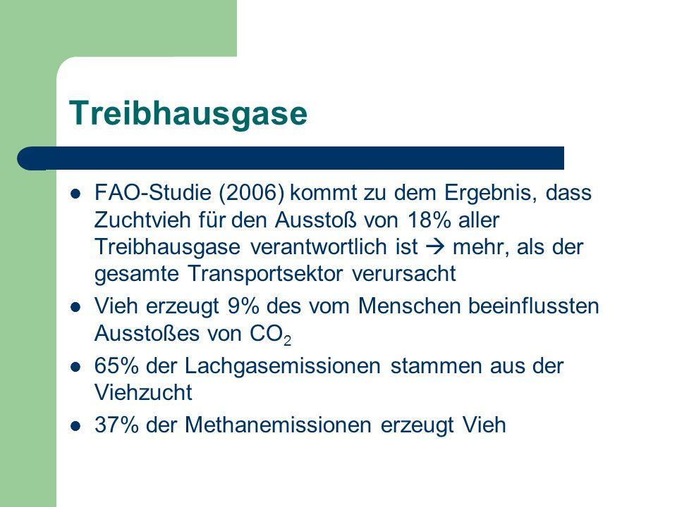 Treibhausgase FAO-Studie (2006) kommt zu dem Ergebnis, dass Zuchtvieh für den Ausstoß von 18% aller Treibhausgase verantwortlich ist mehr, als der ges