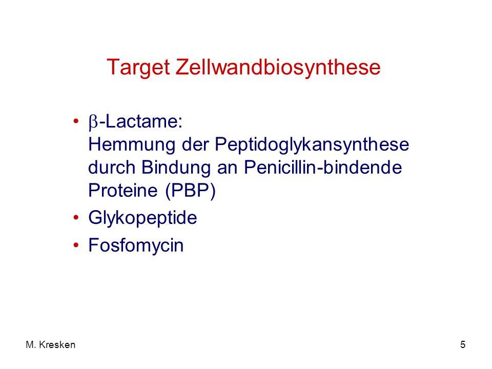 5M. Kresken Target Zellwandbiosynthese -Lactame: Hemmung der Peptidoglykansynthese durch Bindung an Penicillin-bindende Proteine (PBP) Glykopeptide Fo