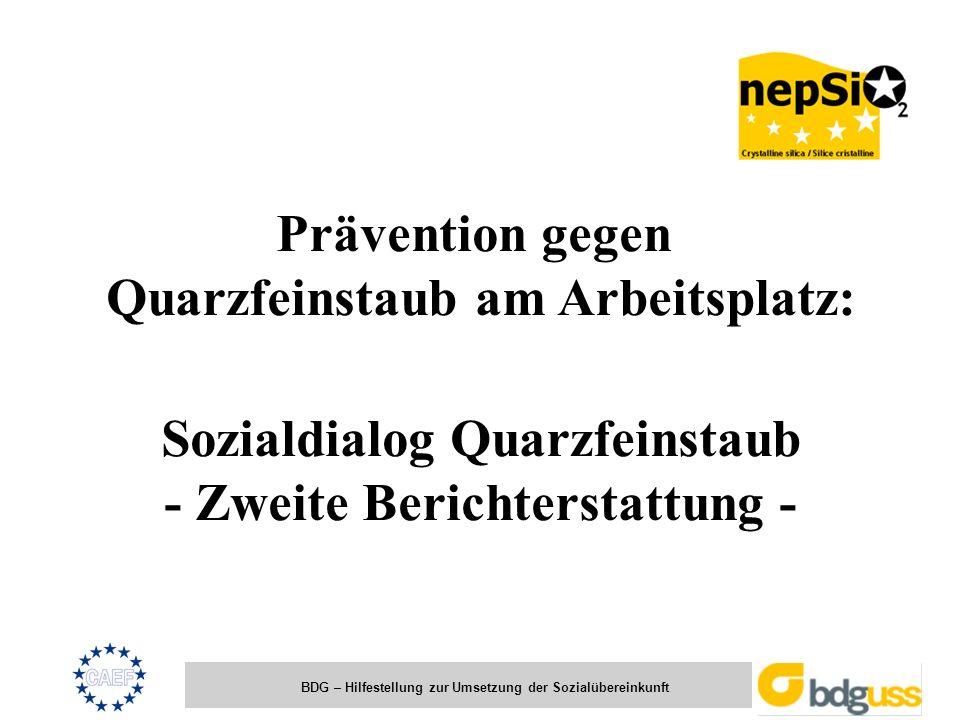 BDG – Hilfestellung zur Umsetzung der Sozialübereinkunft Prävention gegen Quarzfeinstaub am Arbeitsplatz: Sozialdialog Quarzfeinstaub - Zweite Bericht