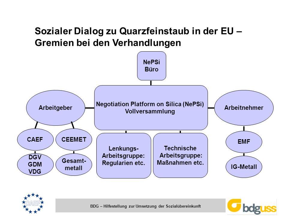 BDG – Hilfestellung zur Umsetzung der Sozialübereinkunft Sozialer Dialog zu Quarzfeinstaub in der EU – Gremien bei den Verhandlungen Negotiation Platf