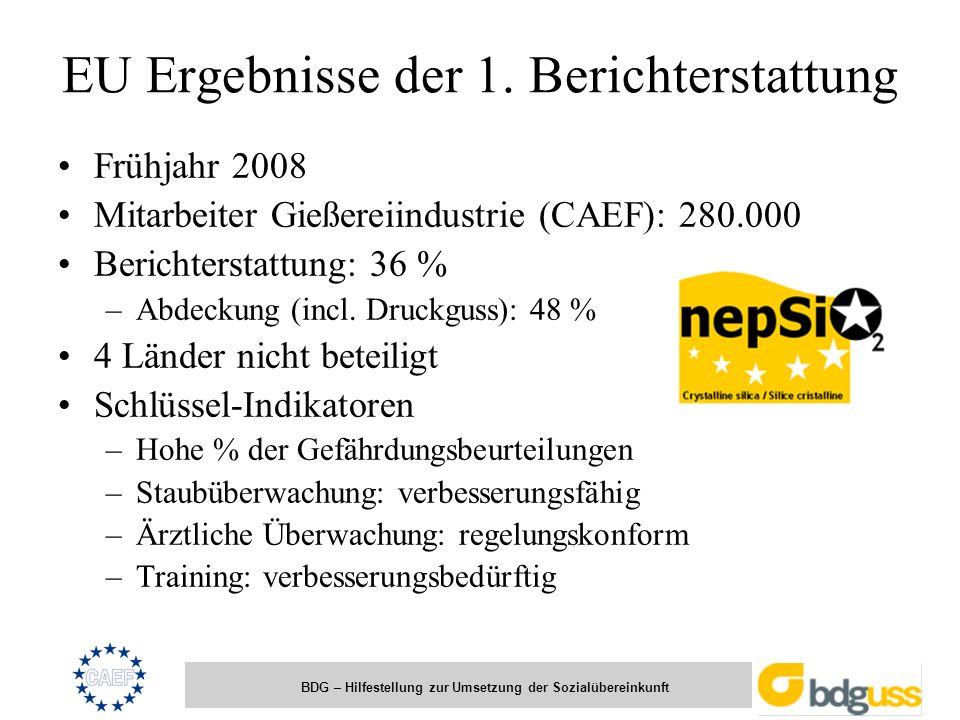 BDG – Hilfestellung zur Umsetzung der Sozialübereinkunft EU Ergebnisse der 1. Berichterstattung Frühjahr 2008 Mitarbeiter Gießereiindustrie (CAEF): 28