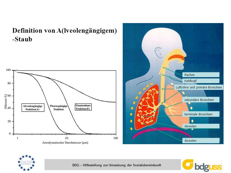 BDG – Hilfestellung zur Umsetzung der Sozialübereinkunft Definition von A(lveolengängigem) -Staub Rachen Kehlkopf Luftröhre und primäre Bronchien seku
