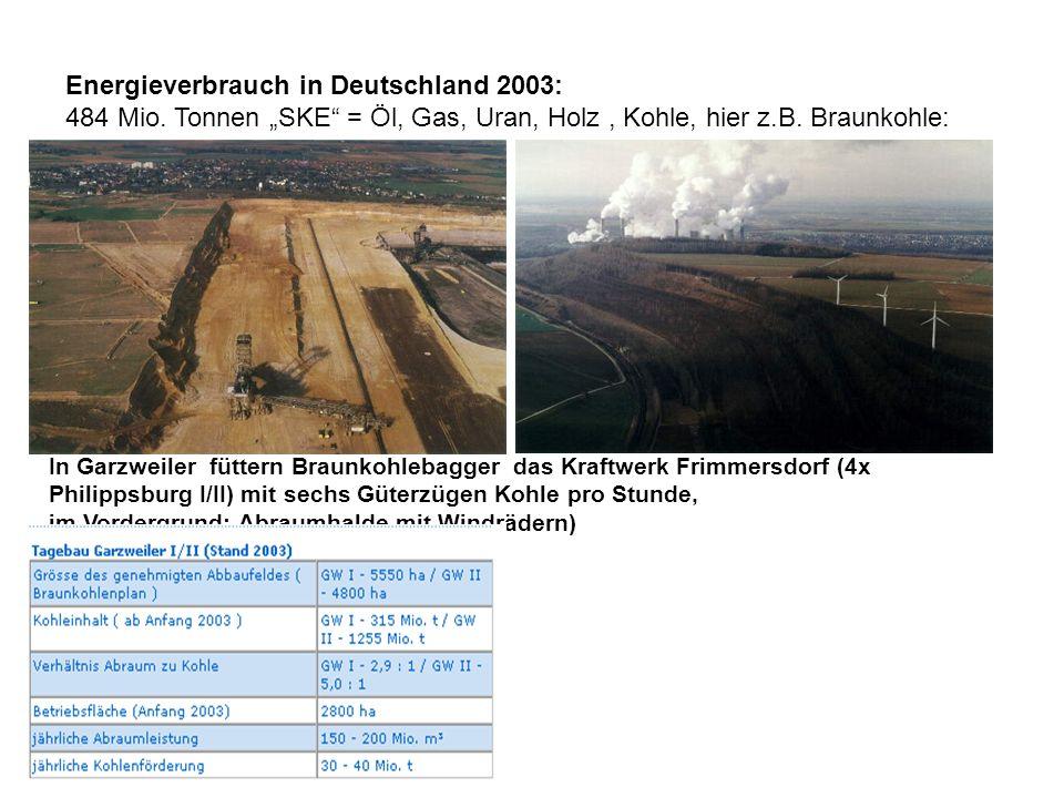 Energieverbrauch in Deutschland 2003: 484 Mio. Tonnen SKE = Öl, Gas, Uran, Holz, Kohle, hier z.B. Braunkohle: In Garzweiler füttern Braunkohlebagger d