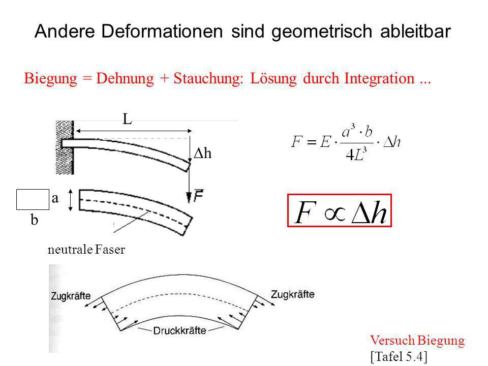Biegung = Dehnung + Stauchung: Lösung durch Integration... a b L neutrale Faser h Andere Deformationen sind geometrisch ableitbar Versuch Biegung [Taf