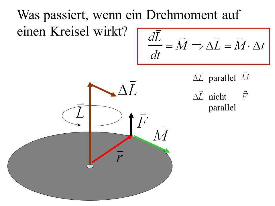 Was passiert, wenn ein Drehmoment auf einen Kreisel wirkt? parallel nicht parallel