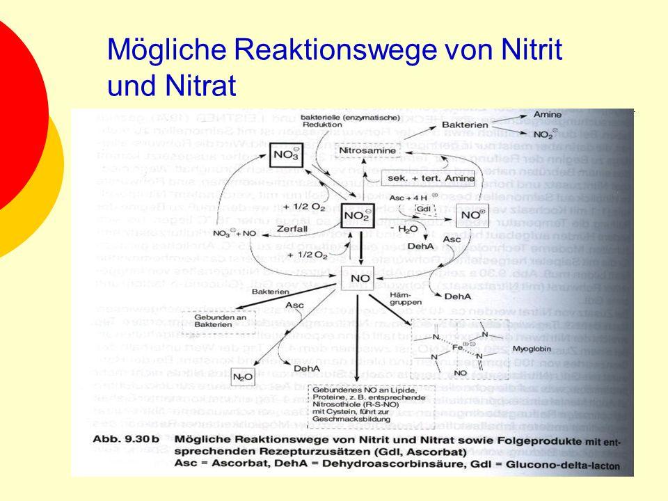 Mögliche Reaktionswege von Nitrit und Nitrat