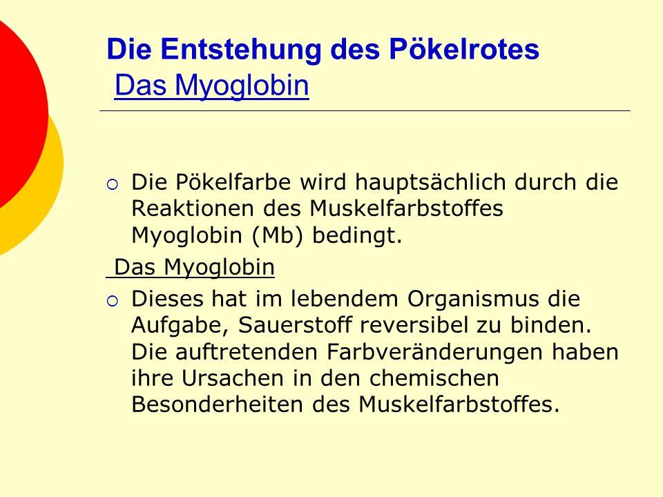 Die Entstehung des Pökelrotes Das Myoglobin Die Pökelfarbe wird hauptsächlich durch die Reaktionen des Muskelfarbstoffes Myoglobin (Mb) bedingt. Das M