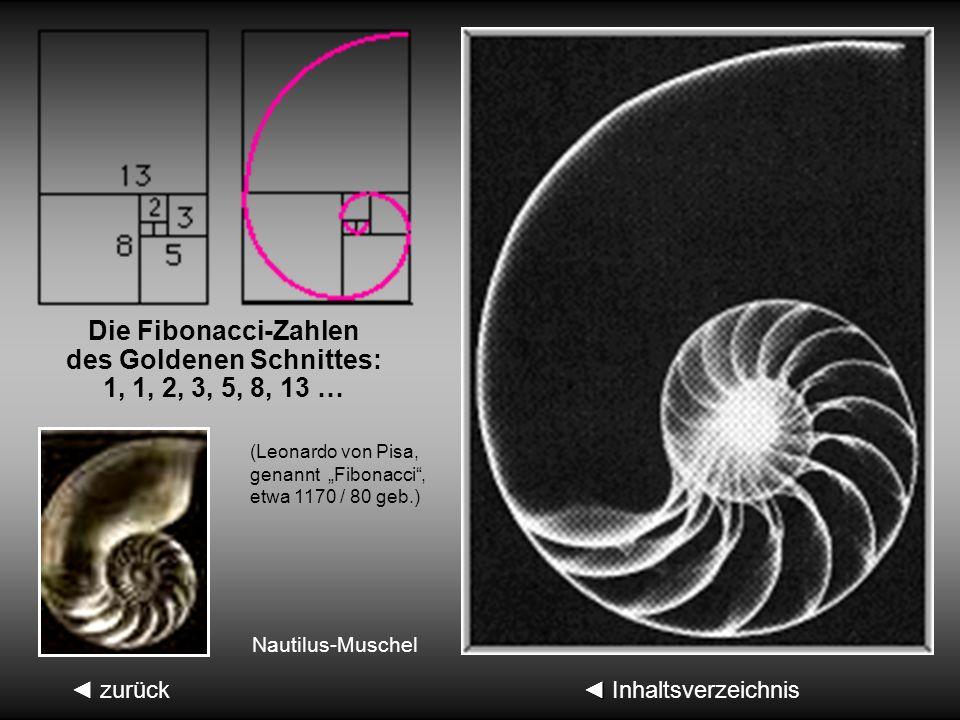 Inhaltsverzeichnis Inhaltsverzeichnis2.2.2 Weitere geometrische Ableitungen des G. S. 1. Beliebteste Methode 2. Ableitung (Euklid) Euklid um 300 v. Ch