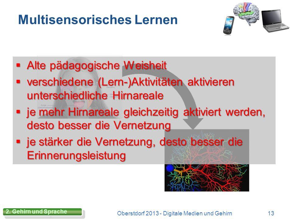 Arbeitsgedächtnis Oberstdorf 2013 - Digitale Medien und Gehirn12 2. Gehirn und Lernen 5 +/- 2 oder 4 +/- 1! (G. A. Miller) 5 +/- 2 oder 4 +/- 1! (G. A