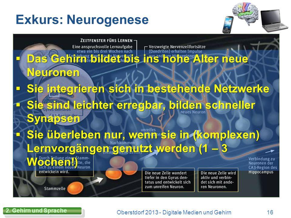 Cognitive Load Theory Oberstdorf 2013 - Digitale Medien und Gehirn15 Lernen mit begrenzten Speicherkapazitäten (Arbeitsgedächtnis) Lernen ist mit kogn