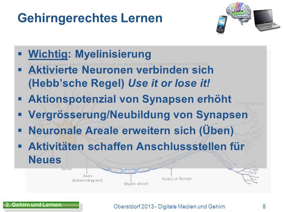 Gehirngerechtes Lernen Wichtig: Myelinisierung Aktivierte Neuronen verbinden sich (Hebbsche Regel) Use it or lose it.