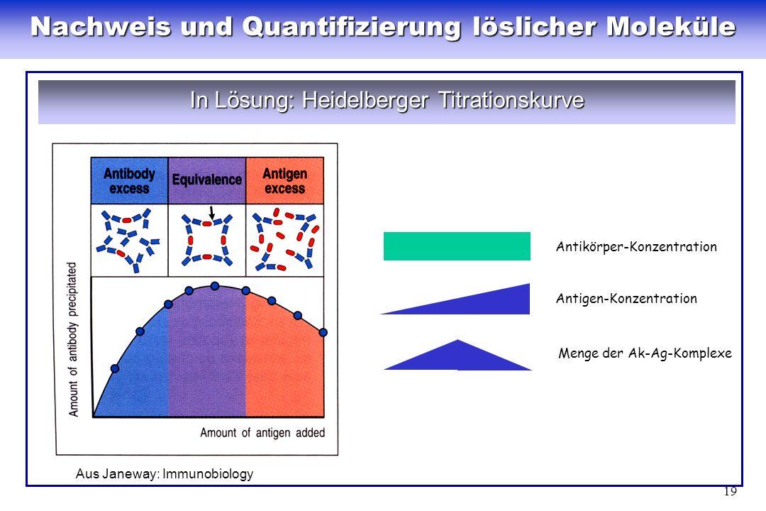 19 Nachweis und Quantifizierung löslicher Moleküle In Lösung: Heidelberger Titrationskurve Menge der Ak-Ag-Komplexe Antigen-Konzentration Antikörper-K
