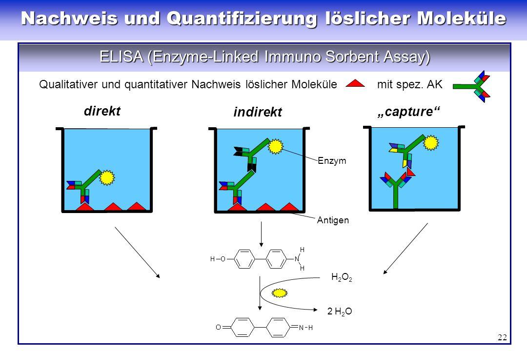 22 H2O2H2O2 2 H 2 O direkt capture indirekt Enzym Antigen ELISA (Enzyme-Linked Immuno Sorbent Assay) Qualitativer und quantitativer Nachweis löslicher