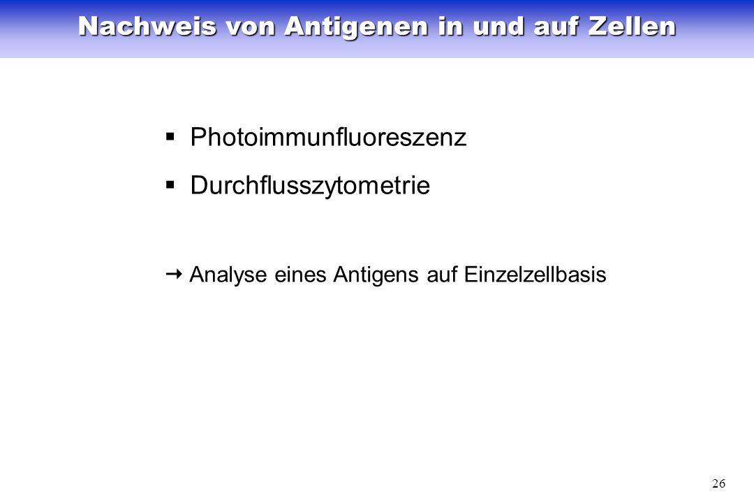 26 Nachweis von Antigenen in und auf Zellen Photoimmunfluoreszenz Durchflusszytometrie Analyse eines Antigens auf Einzelzellbasis