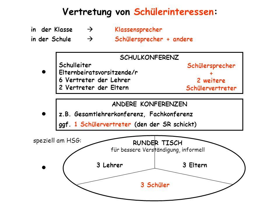 Vertretung von Schülerinteressen: in der Klasse Klassensprecher in der Schule Schülersprecher + andere speziell am HSG: 3 Lehrer3 Eltern 3 Schüler RUN