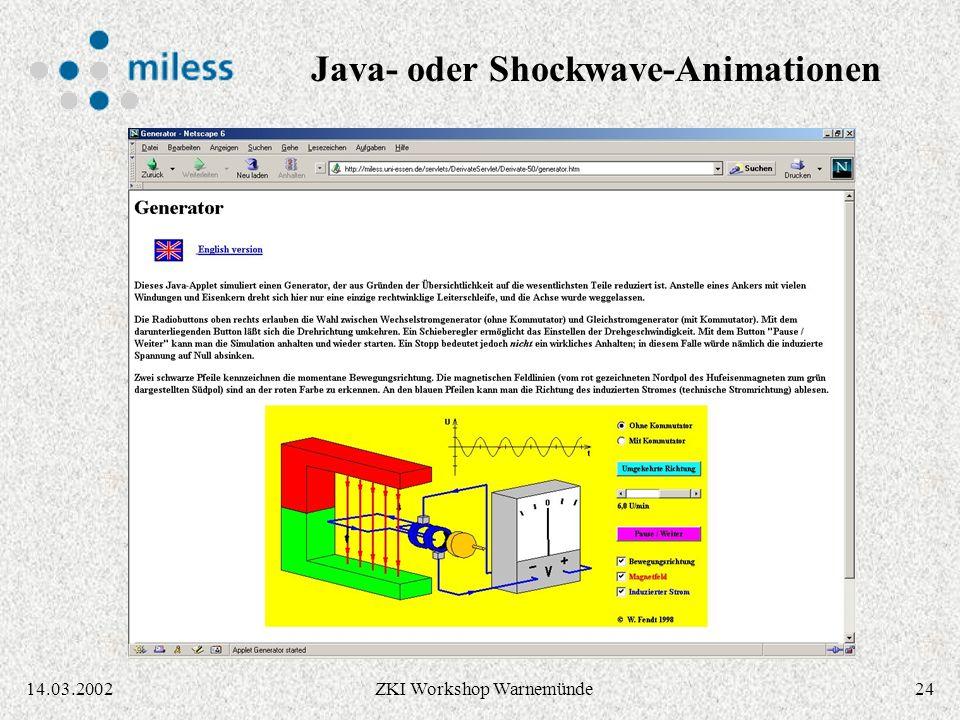 2314.03.2002ZKI Workshop Warnemünde Dissertation in verschiedenen Formaten