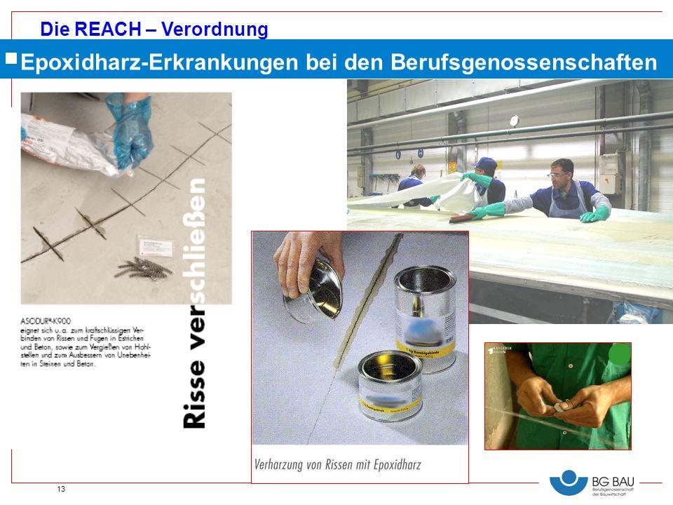 Die REACH – Verordnung 13 Epoxidharz-Erkrankungen bei den Berufsgenossenschaften