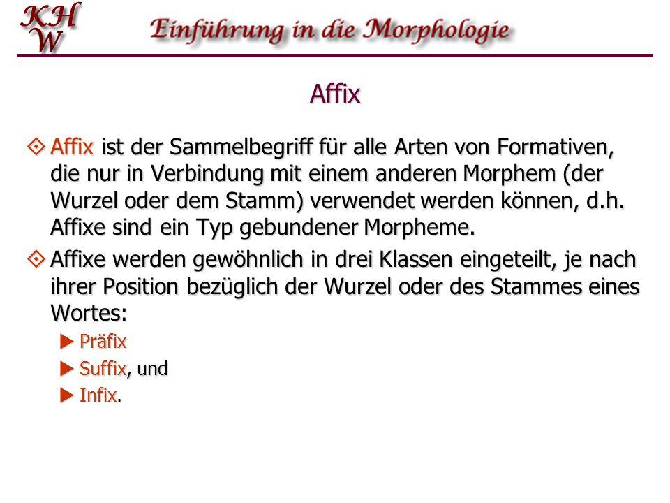 Affix Affix ist der Sammelbegriff für alle Arten von Formativen, die nur in Verbindung mit einem anderen Morphem (der Wurzel oder dem Stamm) verwendet
