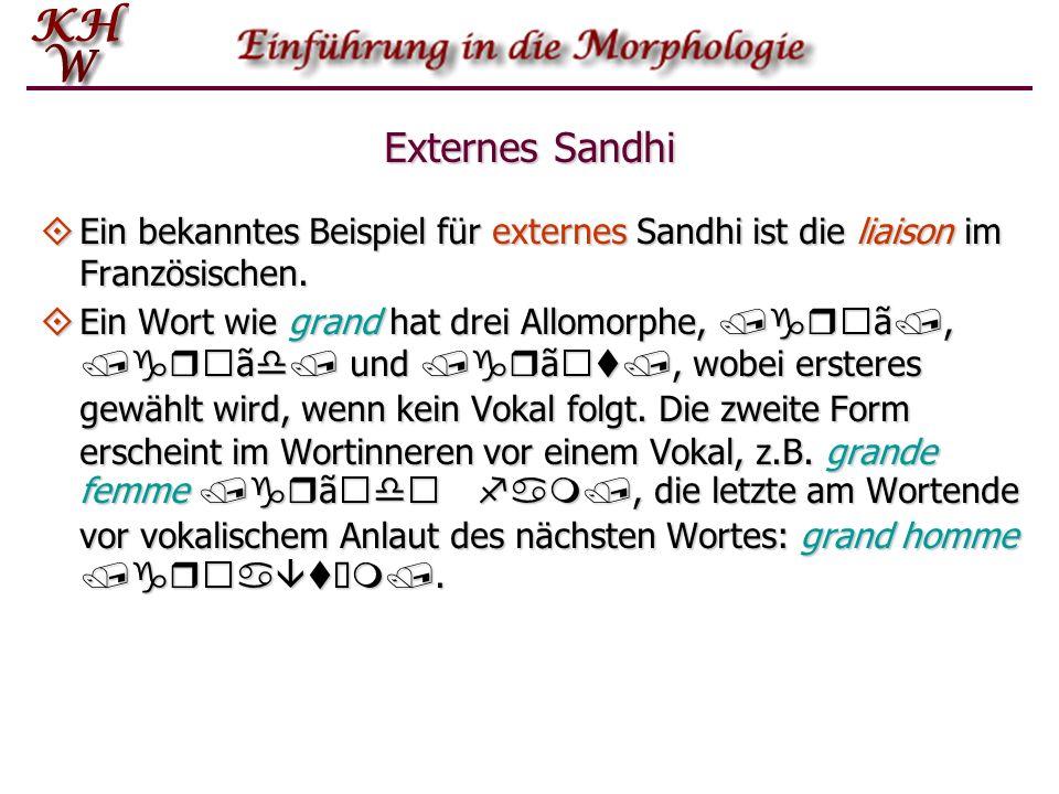 Externes Sandhi Ein bekanntes Beispiel für externes Sandhi ist die liaison im Französischen. Ein bekanntes Beispiel für externes Sandhi ist die liaiso