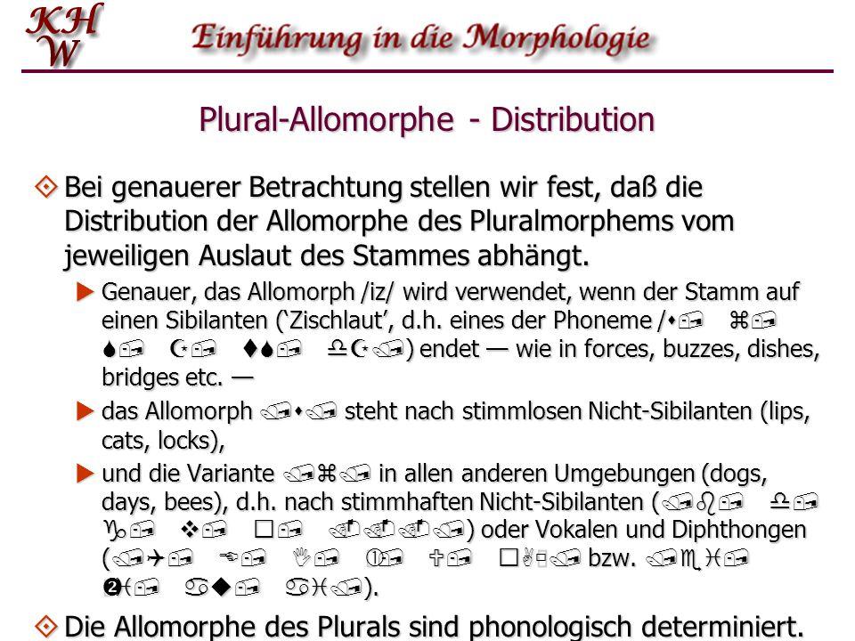 Plural-Allomorphe - Distribution Bei genauerer Betrachtung stellen wir fest, daß die Distribution der Allomorphe des Pluralmorphems vom jeweiligen Aus