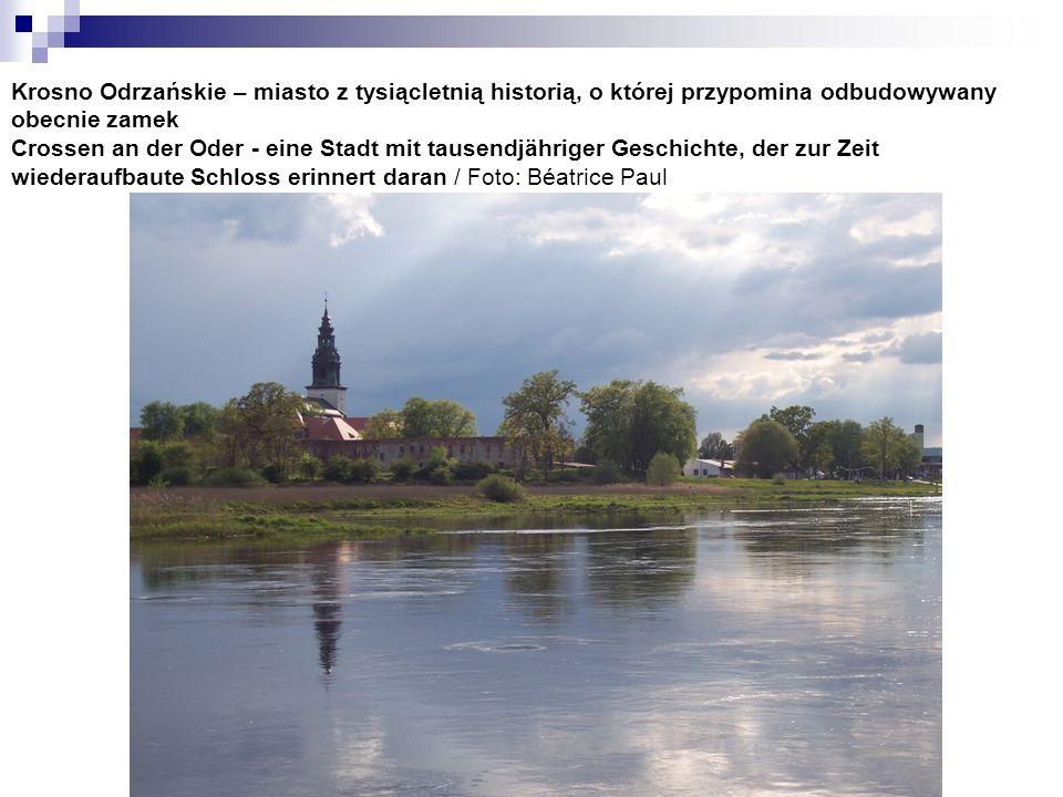 Krosno Odrzańskie – miasto z tysiącletnią historią, o której przypomina odbudowywany obecnie zamek Crossen an der Oder - eine Stadt mit tausendjährige