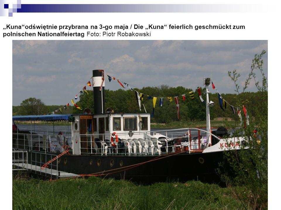 Kunaodświętnie przybrana na 3-go maja / Die Kuna feierlich geschmückt zum polnischen Nationalfeiertag Foto: Piotr Robakowski