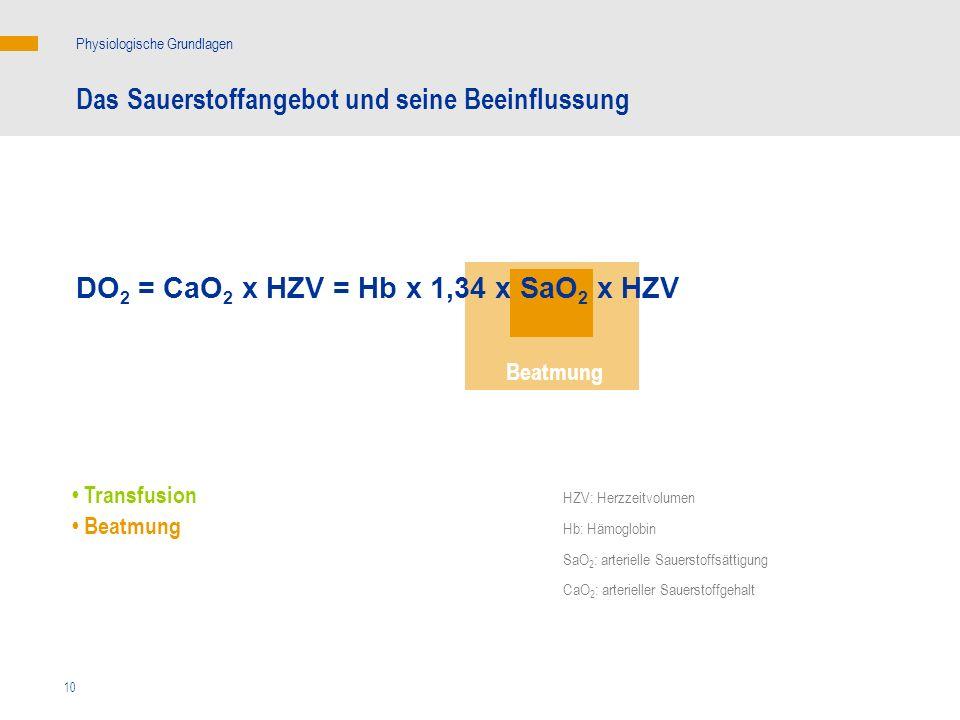 10 Das Sauerstoffangebot und seine Beeinflussung Physiologische Grundlagen DO 2 = CaO 2 x HZV = Hb x 1,34 x SaO 2 x HZV Beatmung Transfusion Beatmung