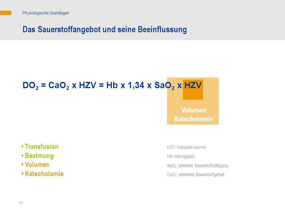 11 Das Sauerstoffangebot und seine Beeinflussung Physiologische Grundlagen DO 2 = CaO 2 x HZV = Hb x 1,34 x SaO 2 x HZV Volumen Katecholamie Transfusi