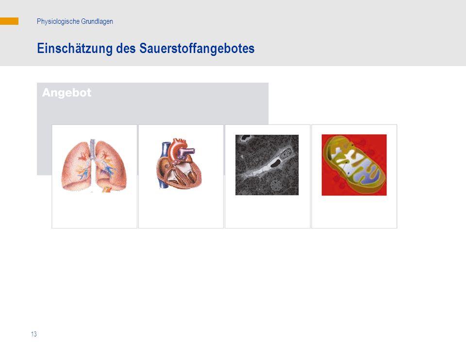 13 Einschätzung des Sauerstoffangebotes Physiologische Grundlagen HZV: Herzzeitvolumen; Hb: Hämoglobin; SaO 2 : arterielle Sauerstoffsättigung HZV, Hb