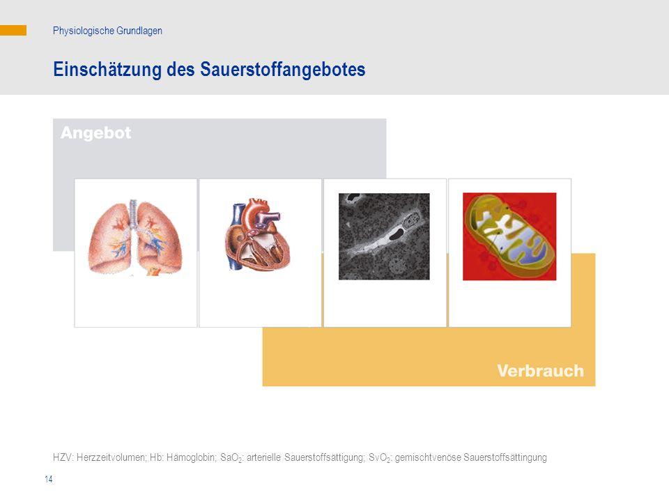 14 Einschätzung des Sauerstoffangebotes Physiologische Grundlagen SvO 2 HZV: Herzzeitvolumen; Hb: Hämoglobin; SaO 2 : arterielle Sauerstoffsättigung;