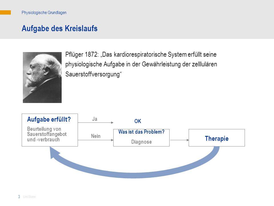 3 Aufgabe des Kreislaufs Pflüger 1872: Das kardiorespiratorische System erfüllt seine physiologische Aufgabe in der Gewährleistung der zelllulären Sau