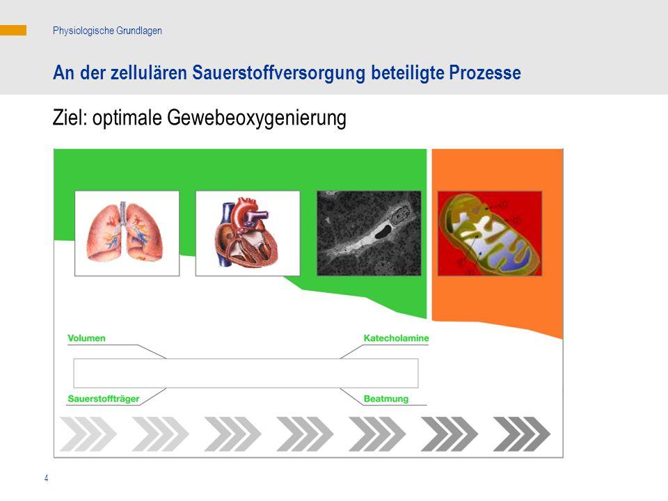 4 Physiologische Grundlagen An der zellulären Sauerstoffversorgung beteiligte Prozesse Ziel: optimale Gewebeoxygenierung Pulmonaler Gasaustausch Makro