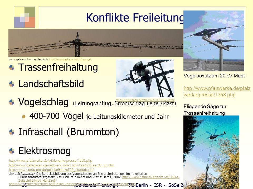 16 Sektorale Planung I - TU Berlin - ISR - SoSe 2007 Konflikte Freileitungen Trassenfreihaltung Landschaftsbild Vogelschlag (Leitungsanflug, Stromschl