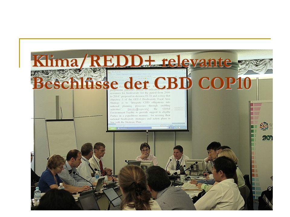 Klima/REDD+ relevante Beschlüsse der CBD COP10