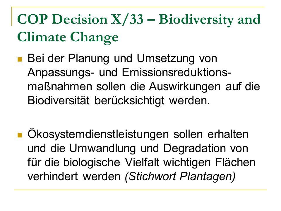 COP Decision X/33 – Biodiversity and Climate Change Bei der Planung und Umsetzung von Anpassungs- und Emissionsreduktions- maßnahmen sollen die Auswirkungen auf die Biodiversität berücksichtigt werden.