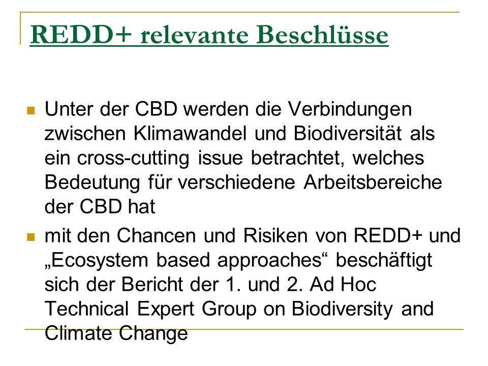 REDD+ relevante Beschlüsse Unter der CBD werden die Verbindungen zwischen Klimawandel und Biodiversität als ein cross-cutting issue betrachtet, welches Bedeutung für verschiedene Arbeitsbereiche der CBD hat mit den Chancen und Risiken von REDD+ und Ecosystem based approaches beschäftigt sich der Bericht der 1.